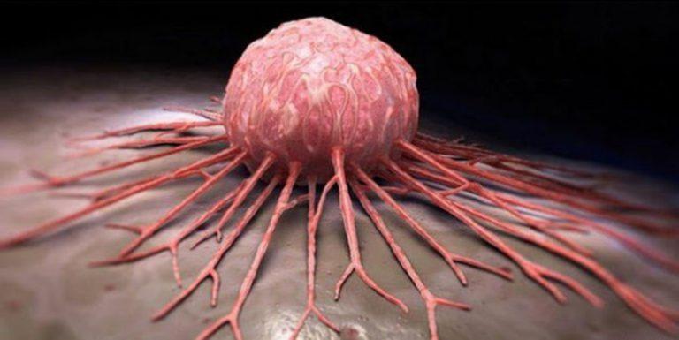 rák, amely rák pillangó csecsemőkorban