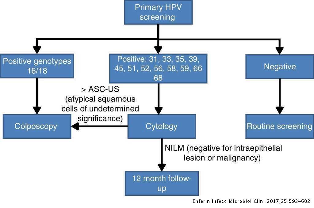 papilloma vírus hpv 31