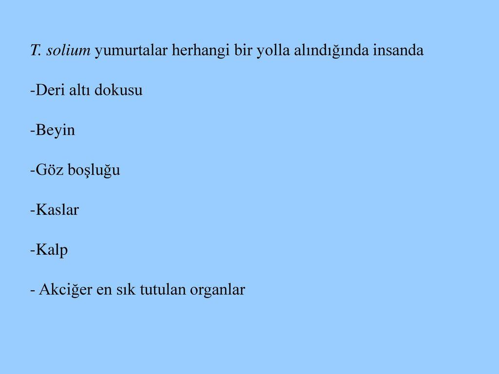 mit jelent görögül a helmintus