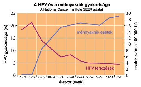 Hatékonyak lehetnek a HPV ellen egyes daganatellenes szerek | PHARMINDEX Online