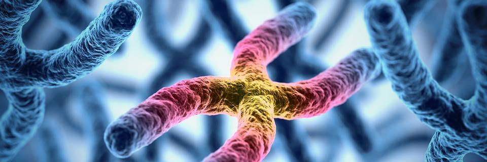 Rák és BRCA génmutáció: kinél indokolt genetikai vizsgálat?