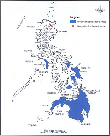schistosomiasis philippines 2020 tabletták kerékférgek és férgek ellen