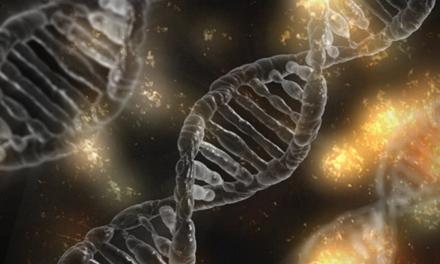 Örökletes génhiba állhat a rák mögött | bestgumi.hu