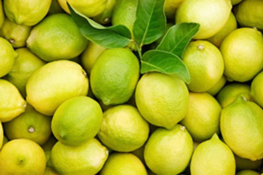 citrom méregtelenítő vastagbél tisztítja az étrendet)