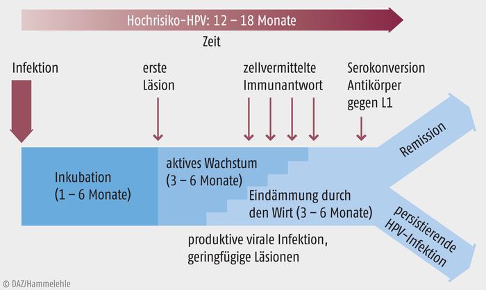 hpv impfung nach fertőzés