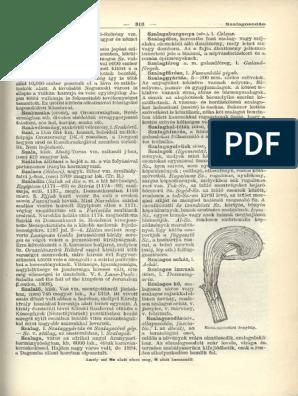 Esztergom és Vidéke,   Könyvtár   Hungaricana