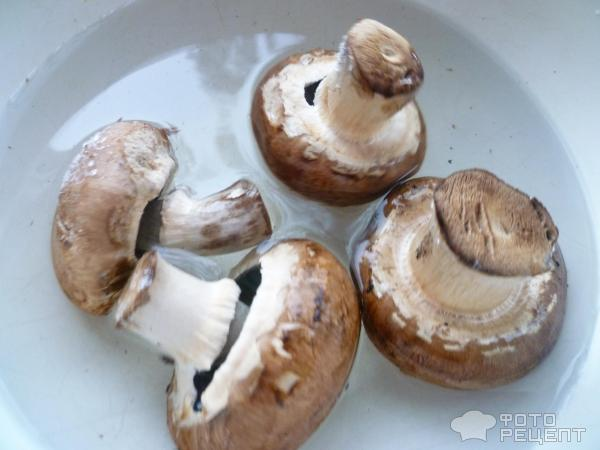 gomba fehér mártással)