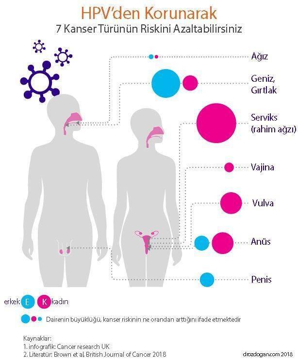 petefészekrák kiújulásának tünetei papilloma vírus kutya tünetei