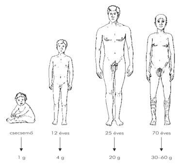 urethralis condyloma eltávolítása férfiaknál)
