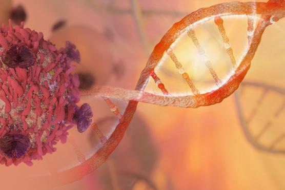 genetikai rákos sejtek
