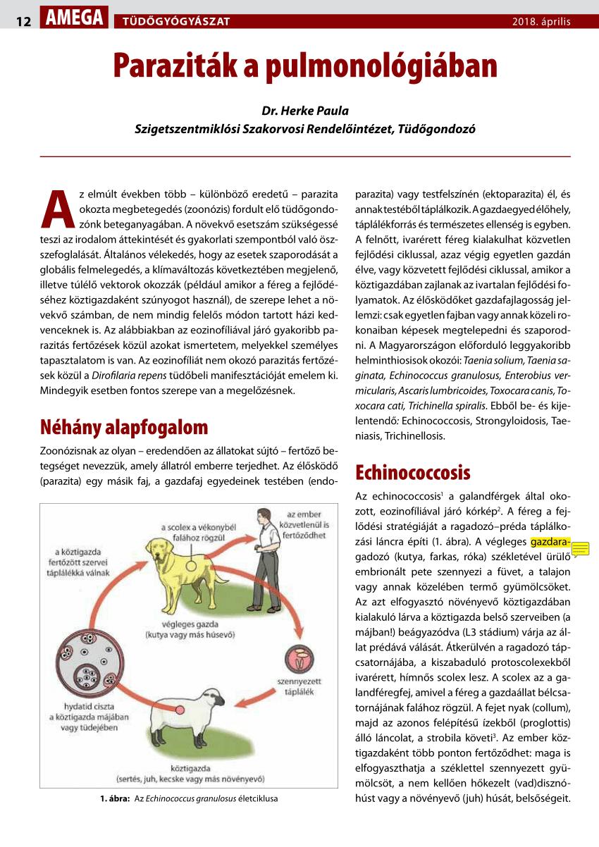 paraziták és vektorok 2020 vírusellenes gyógyszerek papillómákra