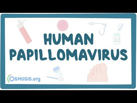 A HPV tünetei: mikor kezdjek gyanakodni? | Neumann Easy Testing