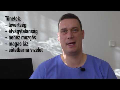 a helminták okozta betegségek)