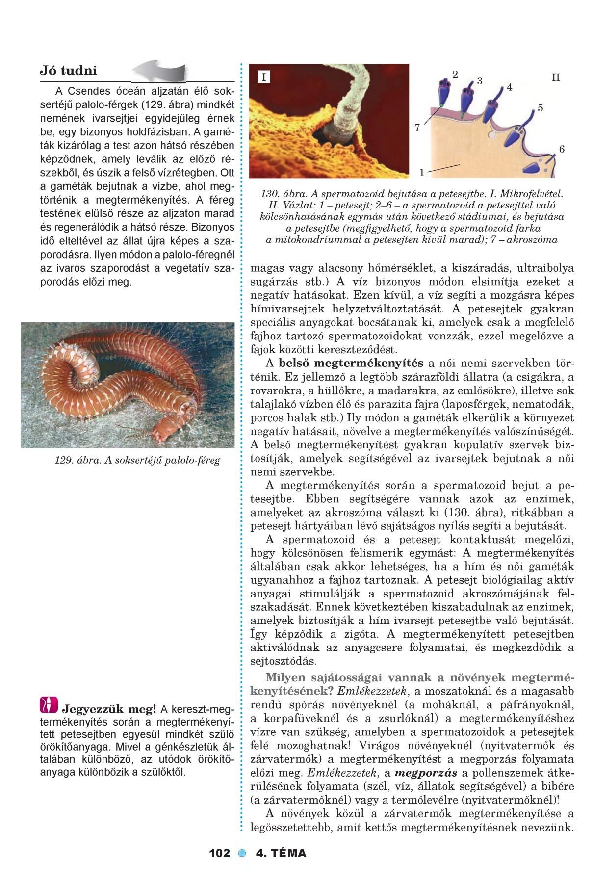férgek petesejtjeinek kezelése)