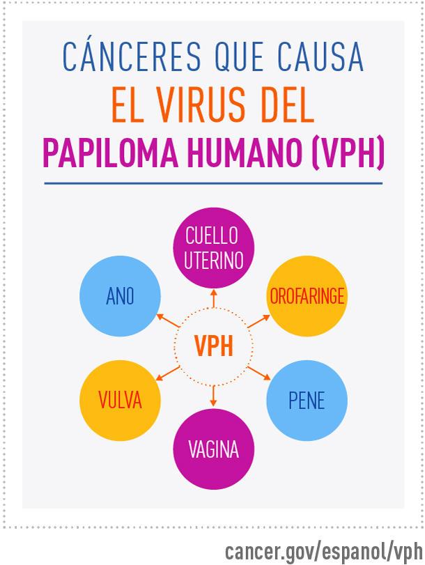 papilloma vírus anális tumor)
