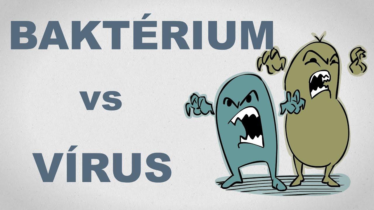 vírusok vs baktériumok