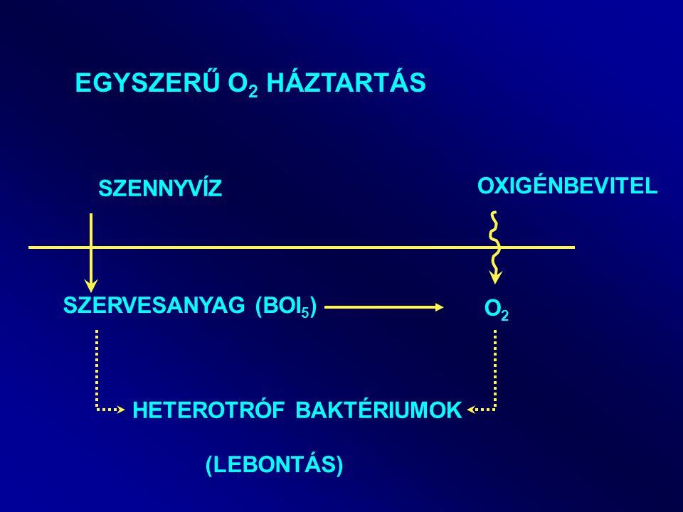Szén-dioxid diétára neveltek baktériumokat laboratóriumi környezetben - Arsratio