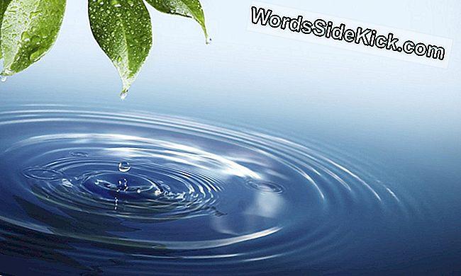 schistosomiasis víz)