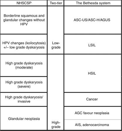 hpv vírus és dyskaryosis)