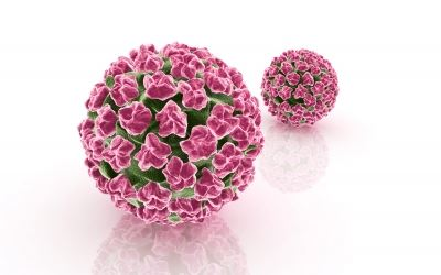 hpv vírus és orl rák