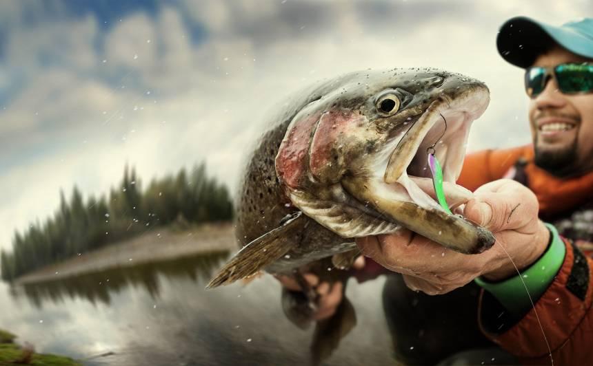 parazita zivis
