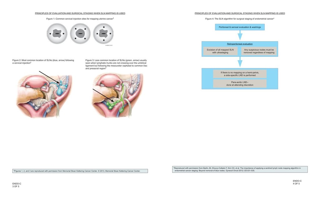 fordított papilloma hólyagtünetek függő papilloma mit kell tennie
