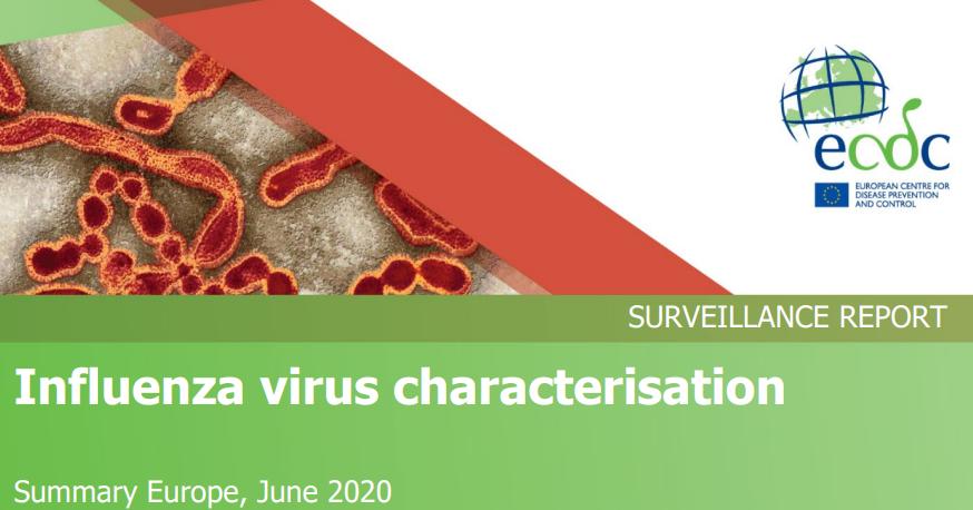 influenza vírus 2020