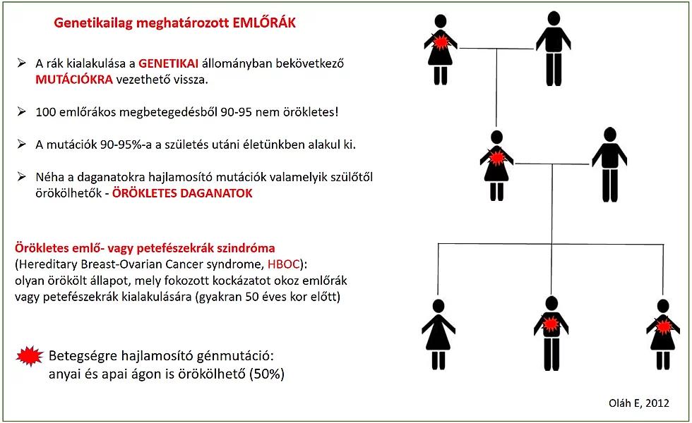 rák genetikai mutációi)