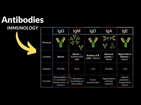 gömbférgek elleni antitestek