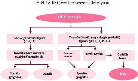 hpv természetes kezelés