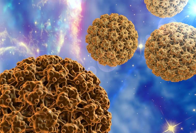 HPV vírus humán papilloma vírus)