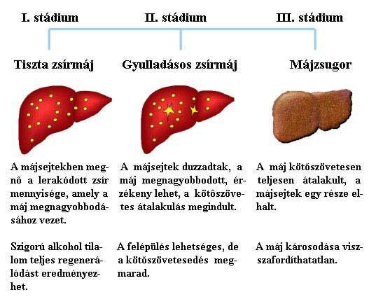Papilloma vírus a szájban tünetek székletférgek kezelése embereknél