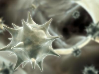 papilloma rák vírus