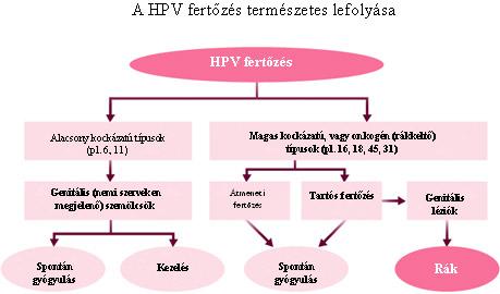 papillomavírus és fájdalom a közösülés során)