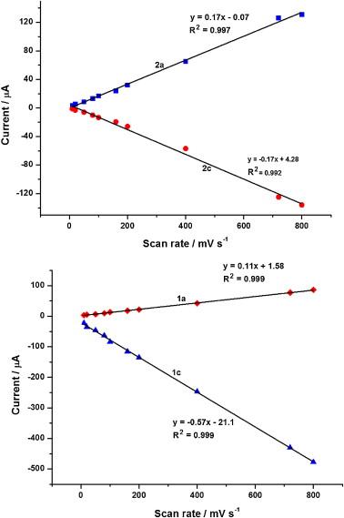 parazita csúszdák a szarvasmarha galandférgének fejlődési ciklusa
