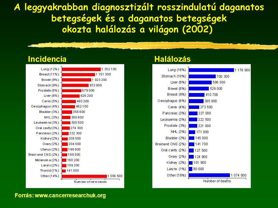 Magyarországon a legmagasabb a rák miatti halálozási ráta az unióban