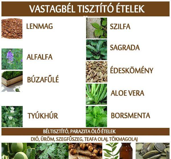 vastagbél tisztító természetes receptek