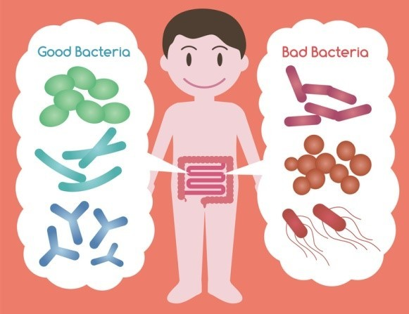 rossz baktériumok szuper vastagbél méregtelenítő cvs