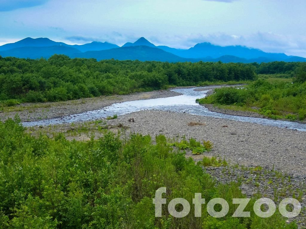 kerek folyók taxonómiája)