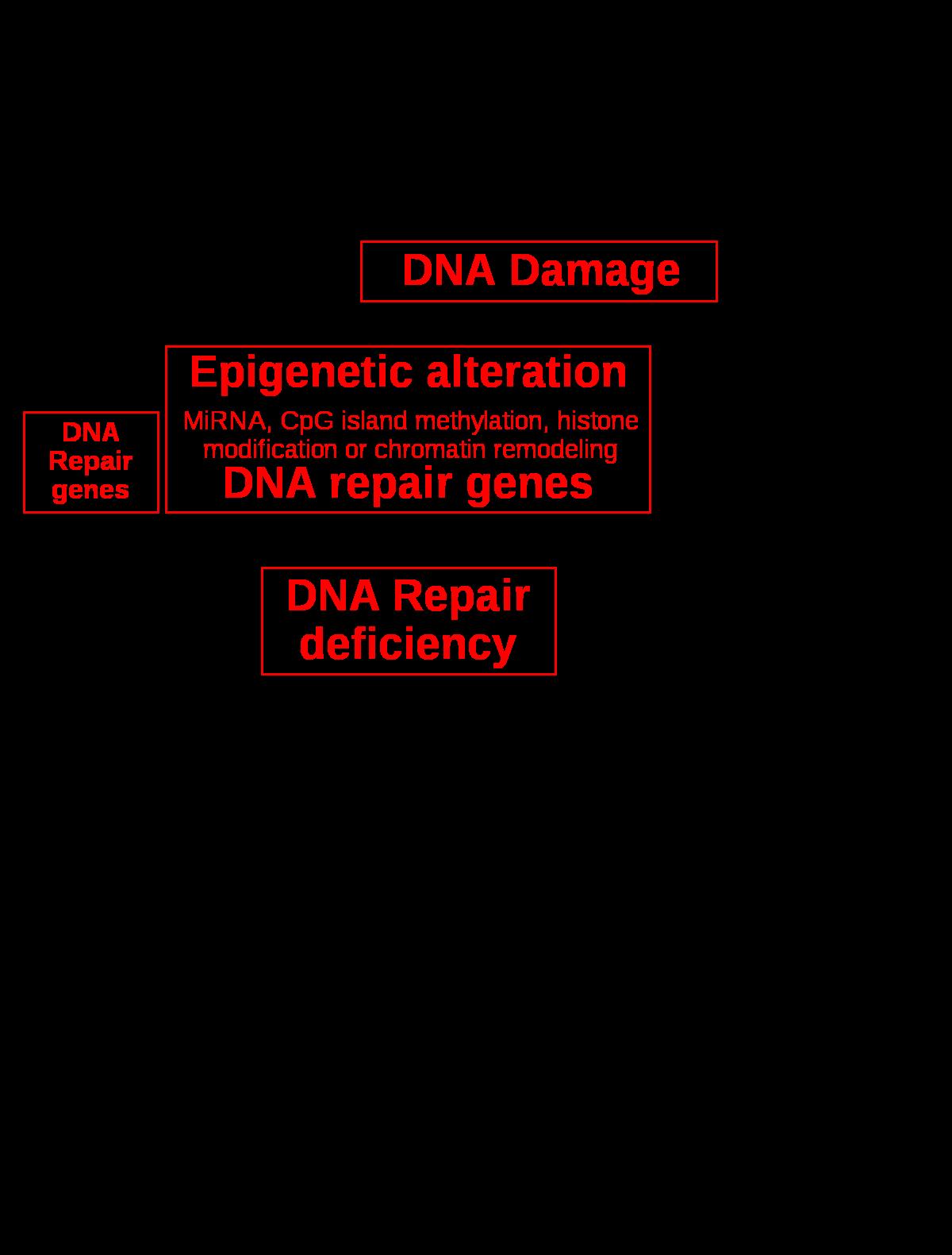 sugárzásból származó szarkóma rák
