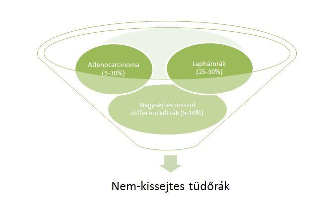 Áttétes prosztatadaganat ideje (jelige: 19fater54) | Rákgyógyítás