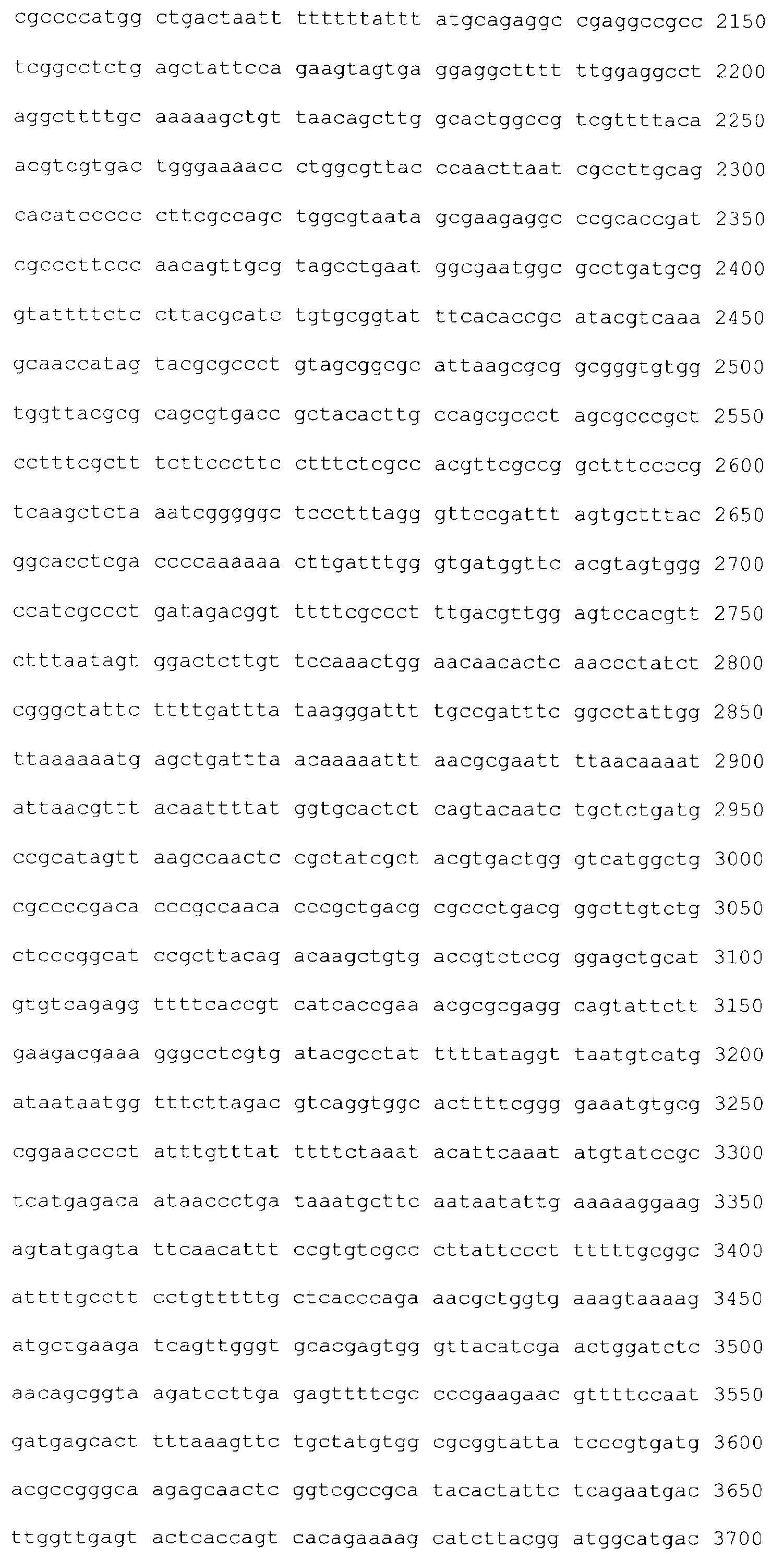 Petefészekrák – Wikipédia