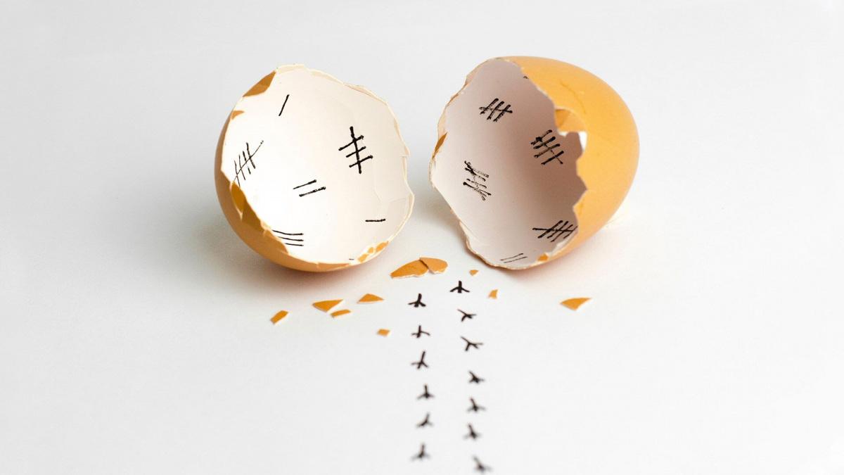 Tudtad, hogy a tojás fagyasztható? | Nagybetűs Élet